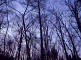 静電気と冬の関係についての説明