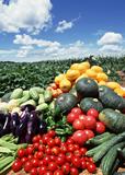 野菜類は血液をサラサラにしてくれる